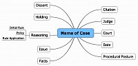 Bubble diagram about Case brief