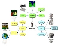 Concept map about Primates