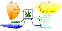 Mindmap about Cannabis