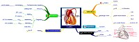 Mindmap about Coronary Artery Bypass Graft
