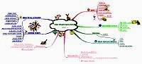 Mindmap about Vegetarianism (year 8)