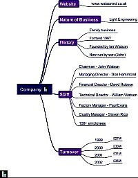 Mindmap for Company briefing for interview