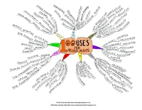 Mindmap of 100 Uses for mind maps