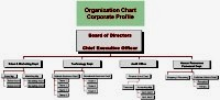 Tree diagram for an Organization chart (corporate profile)